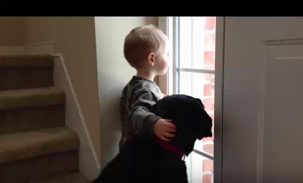 a-little-boy-and-a-sad-black-labrador