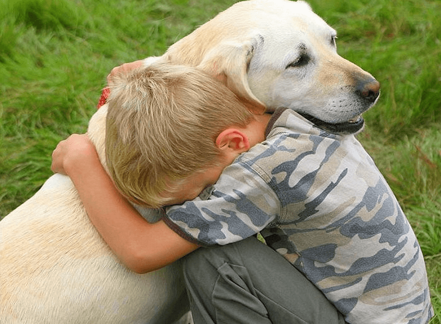 Hugging Your Lab, How to Tell if He is Really Enjoying it?